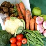 5 τρόφιμα που έχουν καλύτερη γεύση τον Νοέμβριο!