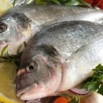 Ελεύθερα ψάρια VS ψάρια τεχνητής καλλιέργειας