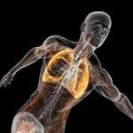 Συστήματα του ανθρώπινου σώματος: Πως χάνεται το λίπος από το σώμα μας;