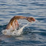 Γιατί το κολύμπι είναι μια από τις πιο ωφέλιμες ασκήσεις που μπορείς να επιλέξεις!